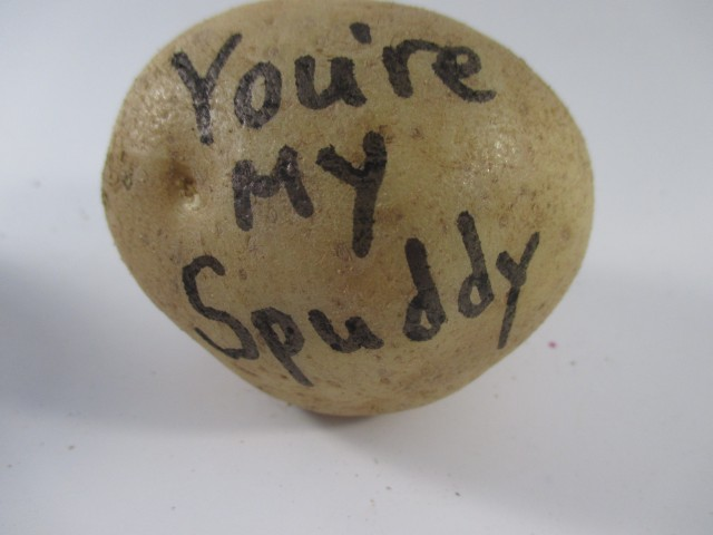 You're my Spuddy - Send a Potato Bouquet