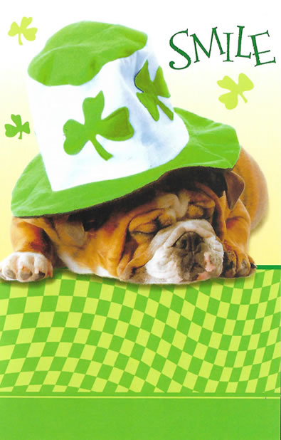 St. Paddy's Day Dog Card - Cute!