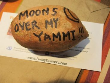 Moon over my Yammi Brick - Funky Delivery Brick