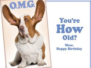 OMG Wow - Funny Dog Happy Birthday Card
