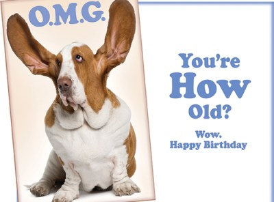 OMG Wow - Funny Dog Happy Birthday Card