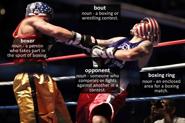 boxing vocabulary