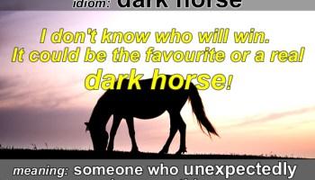 dark horse idiom