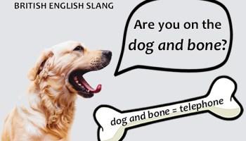 Slang - Dog and bone