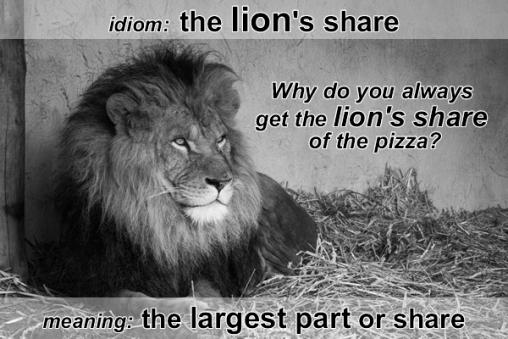 idiom lion's share