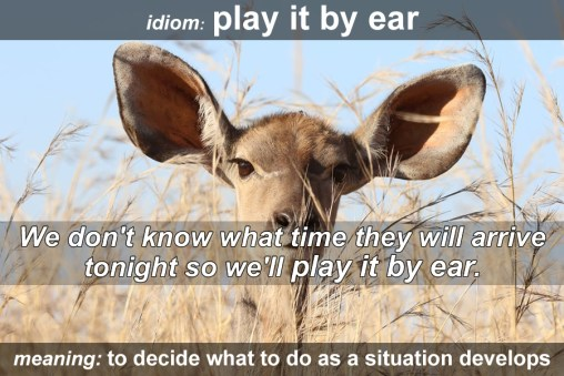 play it by ear idiom