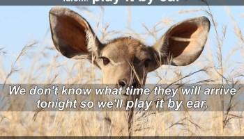 play it by ear idiom