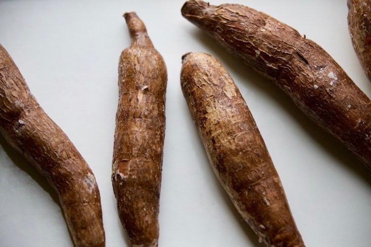 Cassava 2