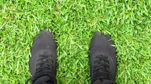 So much grass your feet sink into it.