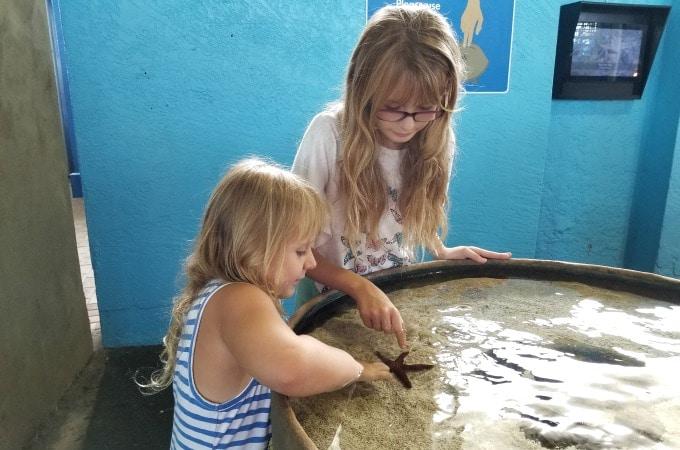Girls touching a starfish at the Mote Marine Aquarium