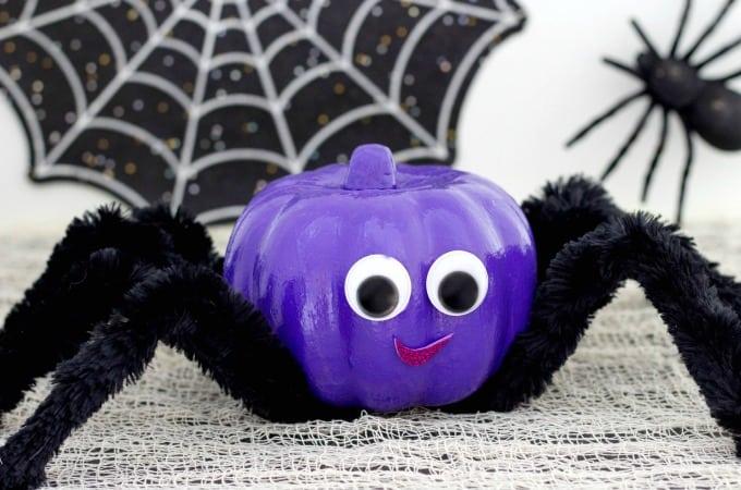Spider Pumpkin Feature