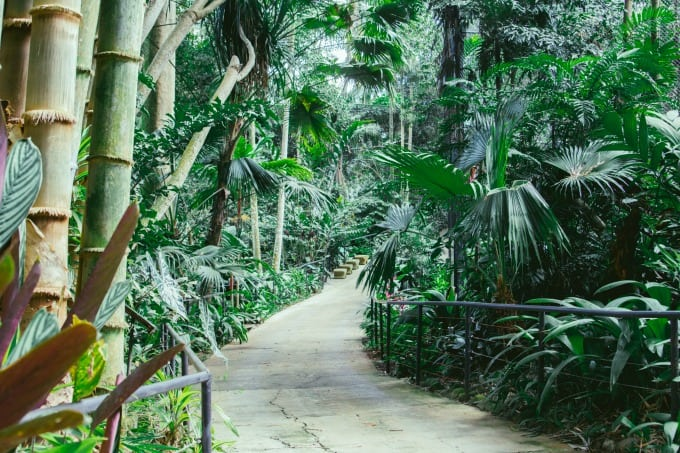 The paths at Rescate Animal ZooAve