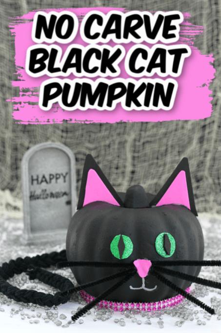 Black cat no carve pumpkin