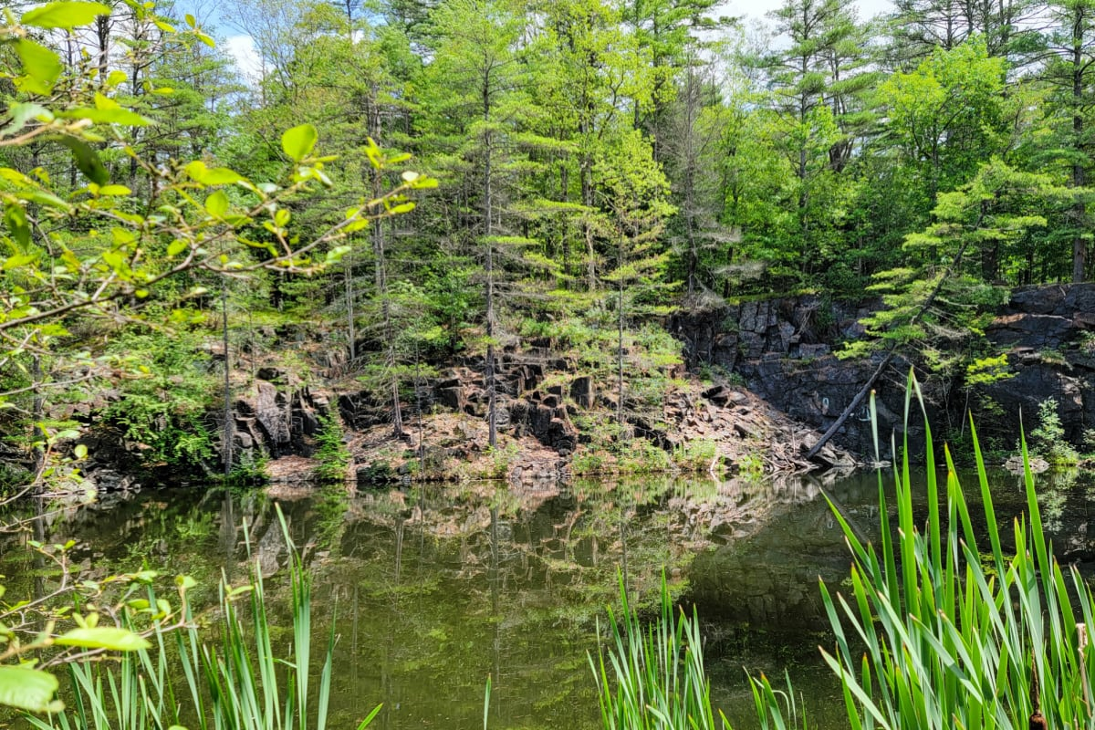 Pond in the Adirondack Mountains