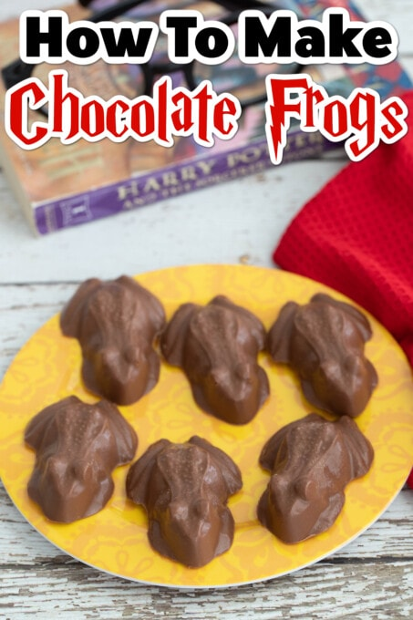 Chocolate Frogs Pin 1
