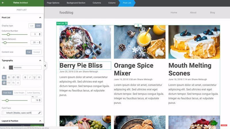 thrive-theme-builder-preview-1