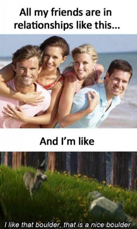Funny Memes About Life : funny, memes, about, Funny, Memes
