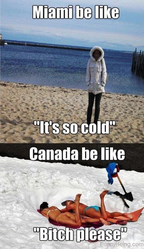 Funny Cold Memes : funny, memes, Funniest, Winter, Memes