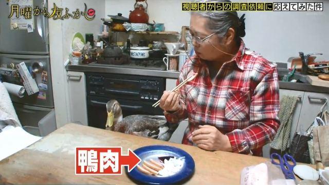 寵物鴨面前「朵刂同類」日本嬤語出驚人!網友瘋傳:牠表情逐漸母湯XD