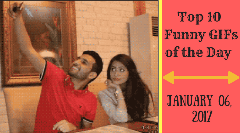 Top 10 Funny GIFs of the Day  January 06 2017