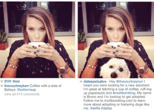 Birthday Quotes for instagram captions