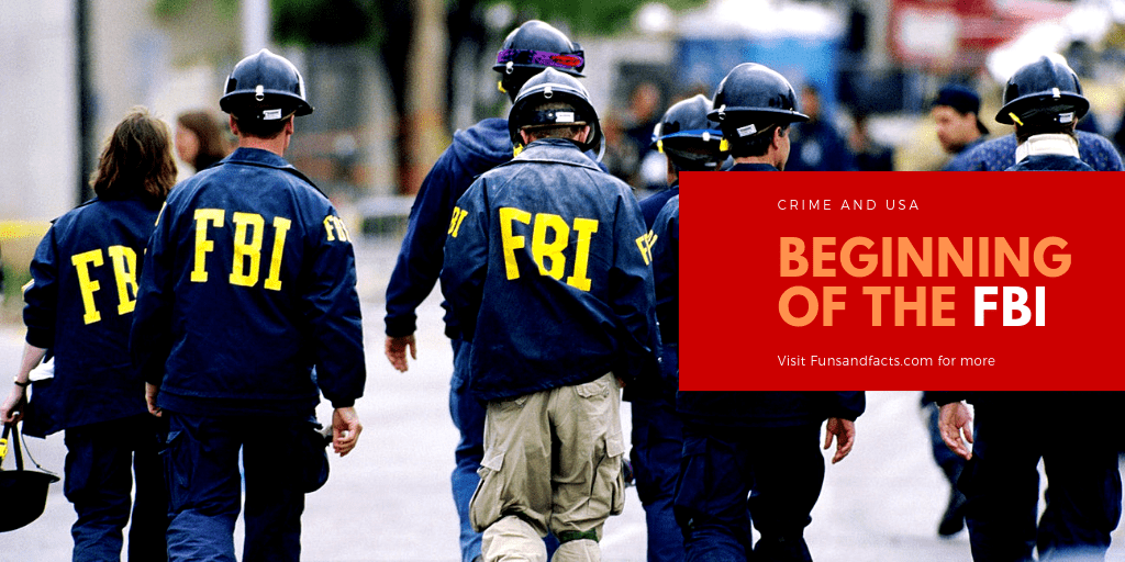 Beginning of the FBI : Crime and USA