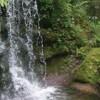 Rainbow Springs State Park
