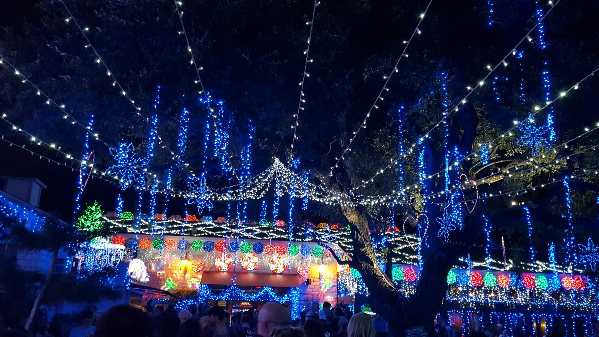 Best of Austin : Holiday Lights Display