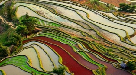 Honghe-Hani-Rice-Terraces-Southern-Yunnan-Province-China