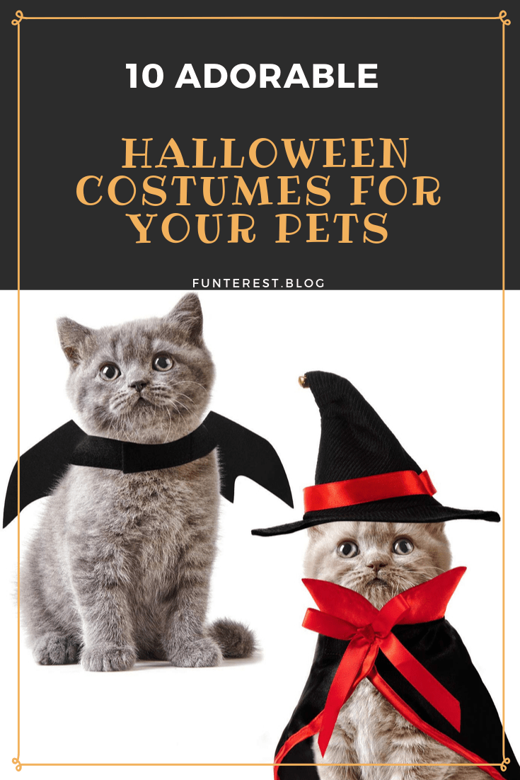 Adorable Halloween Costumes for your Pets