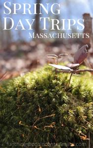 Spring Day Trips Massachusetts