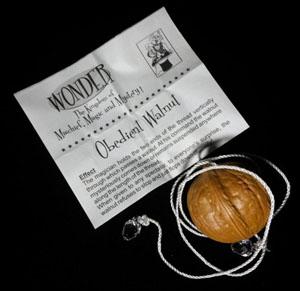 obedient-walnut