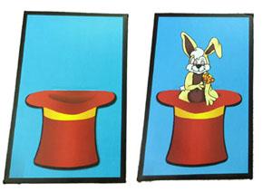 Enchanted Picture Rabbit Hat