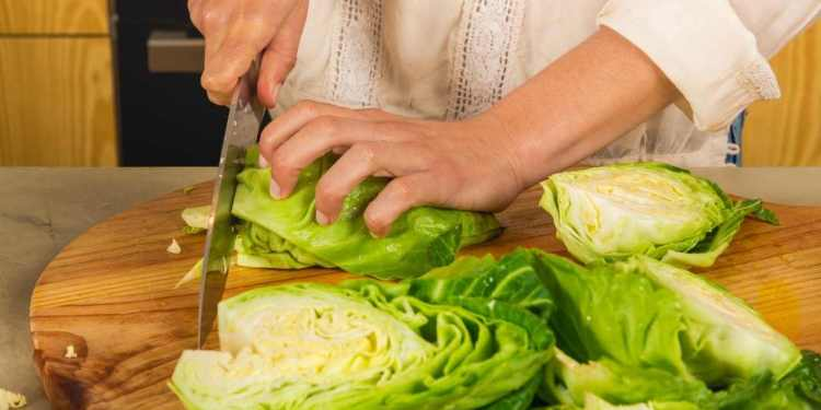 10 Ways To Use Leftover Cabbage Leaves