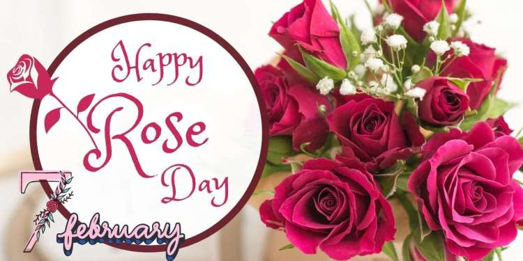 Celebrate Rose Day The First Step Towards Friendship