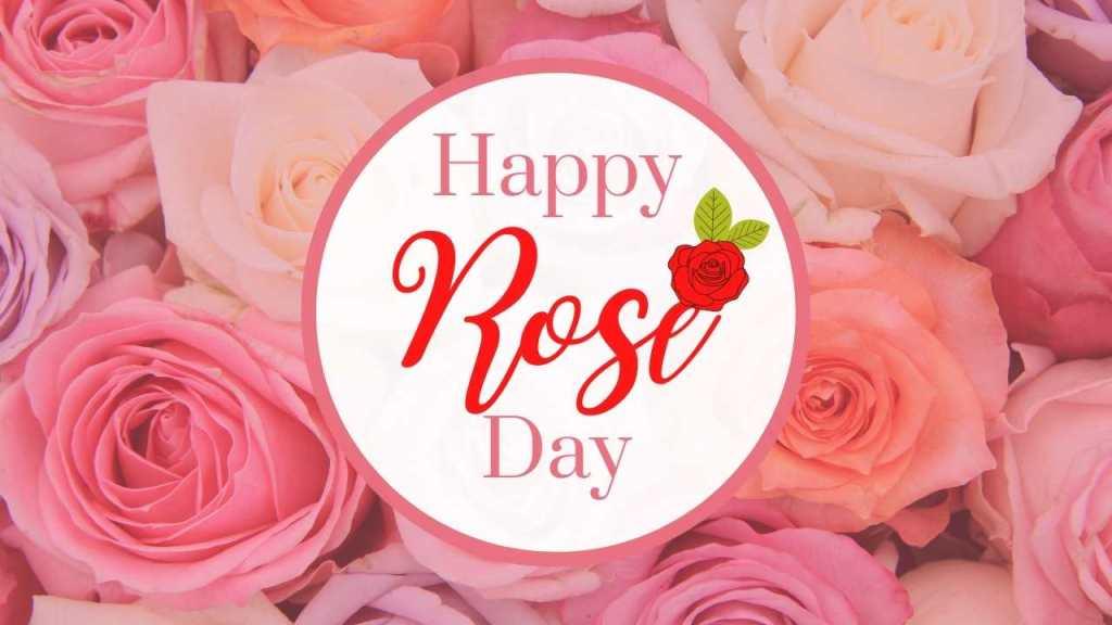 Valentine Week - Rose Day – 7th February