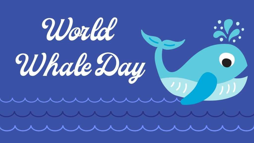 February 21: World Whale day