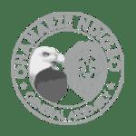 fUNTRICK CLIENT logo 5