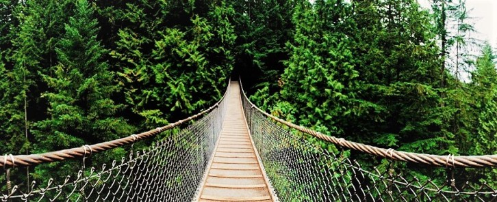 相片來源:https://lynncanyon.ca/tour/suspension-bridge/