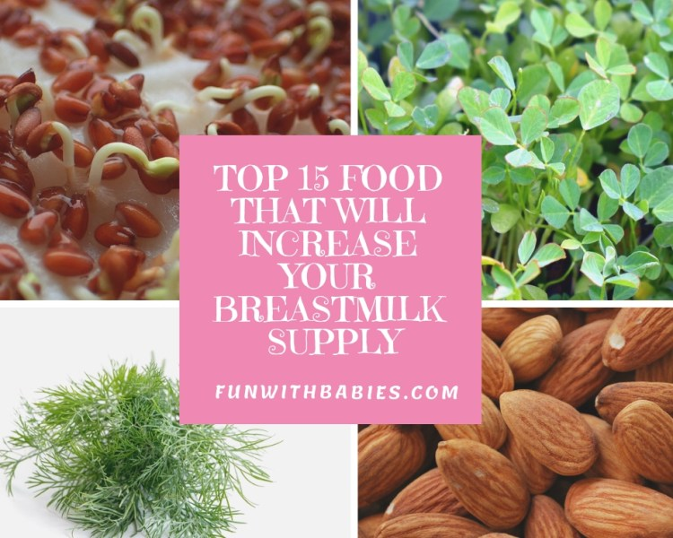 Top 15 Food to Increase your Breast milk supply