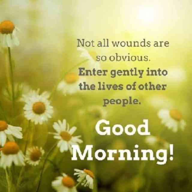 56 Inspirational Good Morning Quotes with Beautiful Images 15