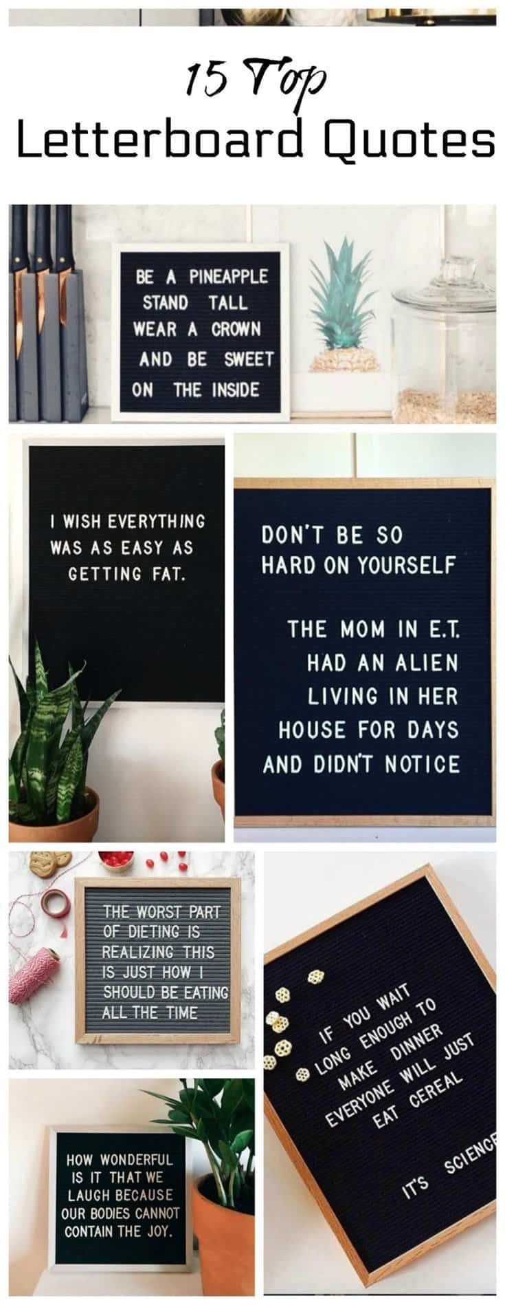 38 Funny Inspirational Quotes To Motivate You Every Day 032