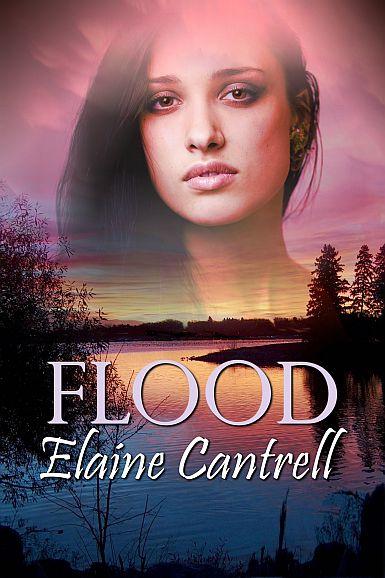 Flood cover