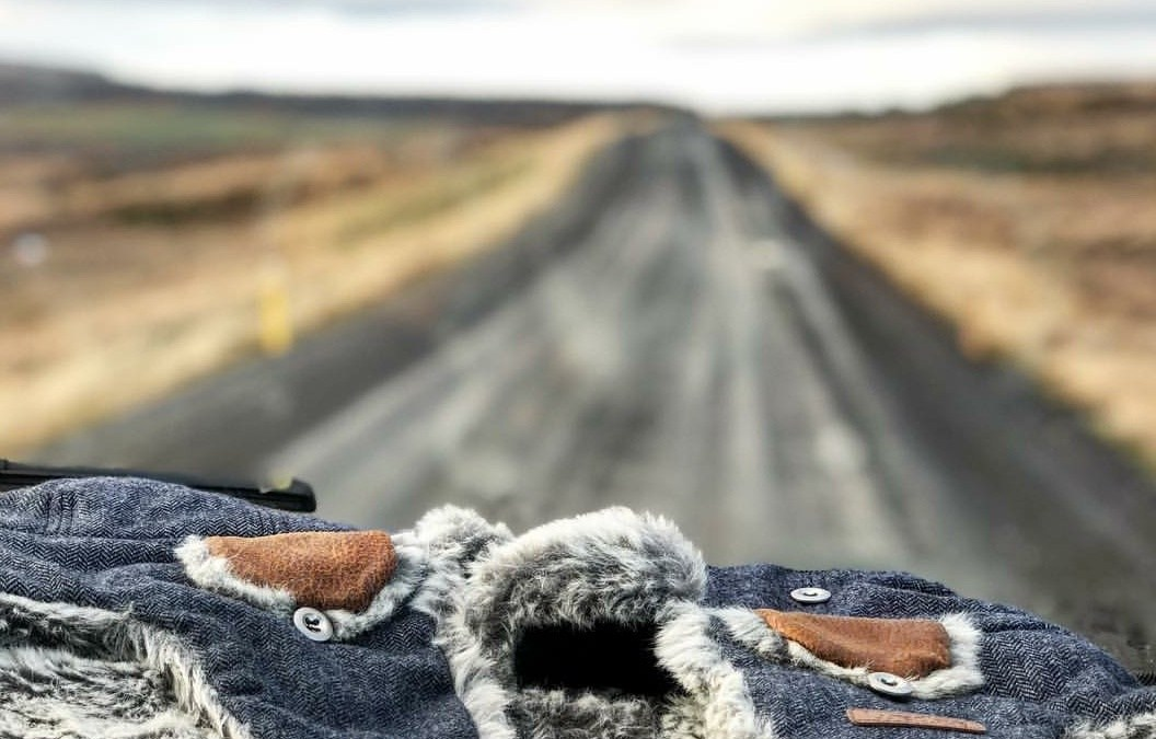 Three passengers: (not) a postcard from Iceland