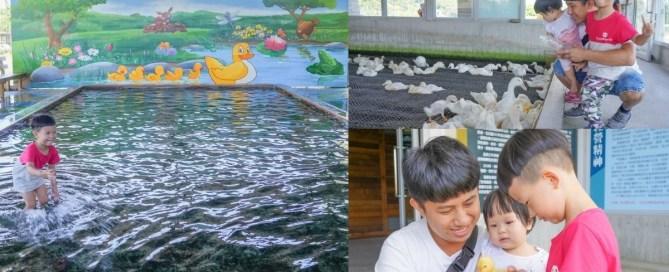 宜蘭親子景點:甲鳥園