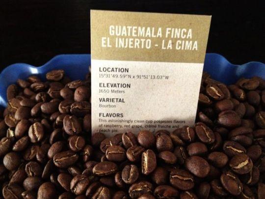 Image result for Finca El Injerto Coffee