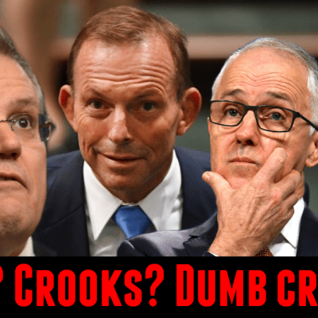 Image: Liberal Party: dumb? Crooks? Dumb crooks?