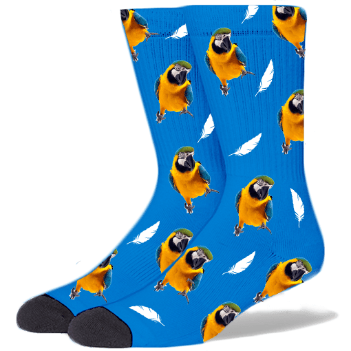 FurbabySocks Custom Blue Bird Socks