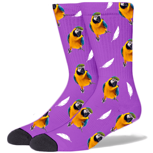 FurbabySocks Custom Purple Bird Socks