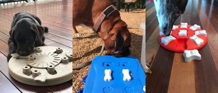 Product Review: Nina Ottosson Dog Toys   Why Use Interactive Dog Toys?
